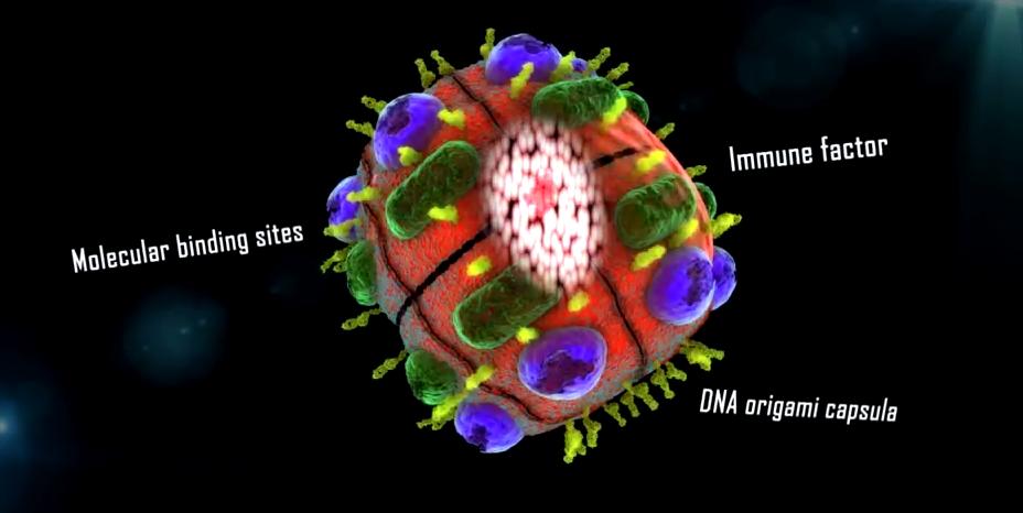 dox-nanoparticelle